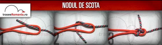 nodul de scota