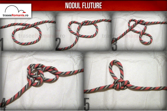 nodul fluture