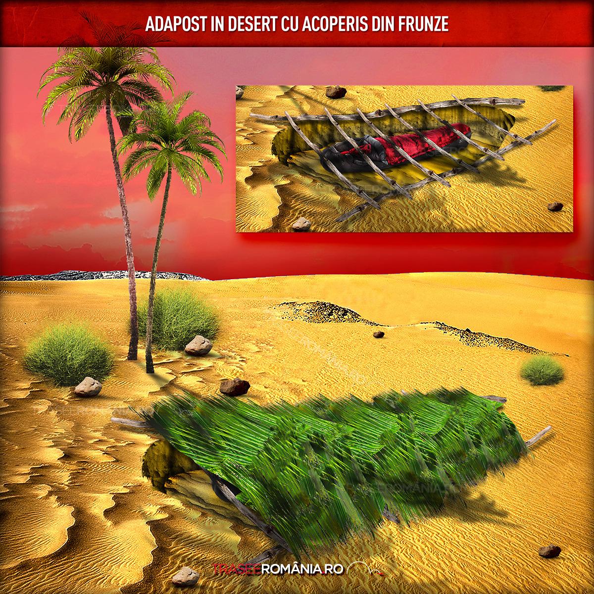 adapost supravietuire vara in desert sapat in sant cu frunze